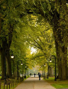 Views of the Penn State Alumni - Puget Sound Chapter campus